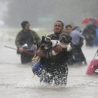 Isiah Courtney transporte son chien Bruce dans les rues inondées par la tempête tropicale Harvey, à Houston, le 28 août 2017.