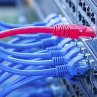 Image représentant des branchements de câbles de réseautage dans un périphérique
