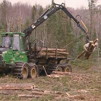 Une chargeuse de billots de bois à l'oeuvre en forêt.