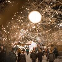 Un arbre illuminé trône au-dessus d'une rue piétonnière où des gens vêtus de manteaux circulent.