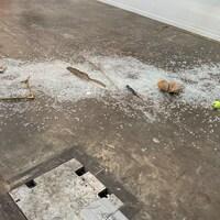 De nombreux morceaux de vitre jonchent le sol, après qu'une installation est tombée par terre.