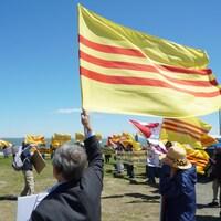 Des manifestants avec des drapeaux