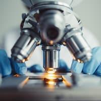 Un chercheur regarde dans un microscope.
