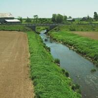 La rivière Boyer qui passe entre deux champs en culture