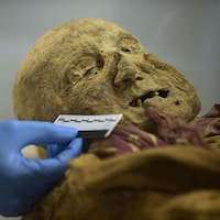 Gros plan sur le visage édenté de la momie de Guano.