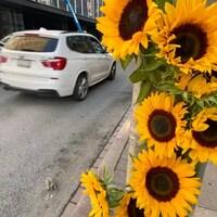 Des fleurs accrochées à un poteau près d'une rue.