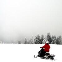 Un motoneigiste avance en montagne avec des sapins devant lui.