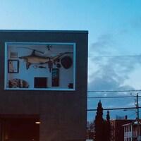 Une oeuvre d'art, posée sur un mur de béton, dans une rue du centre-ville de Drummondville.