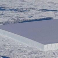 Un iceberg de forme plutôt rectangulaire au milieu d'autres glaces dans l'océan.