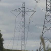 Des lignes d'Hydro-Québec entourées d'arbres.