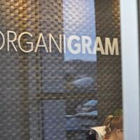 La cote boursière du producteur de cannabis Organigram a doublé au cours des trois derniers mois.