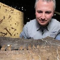 Le paléontologue François Therrien regarde des os mandibulaires de tyrannosaure.