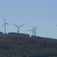 Éoliennes dans le parc du Lac Alfred