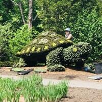 Une femme travaille sur une immense tortue en mosaiculture.