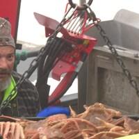 La saison de pêche au crabe est lancée dans la Péninsule acadienne.