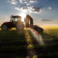 Un tracteur épand des pesticides sur un champ de soya. Il cache le soleil.