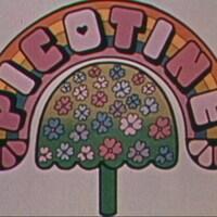 Thème d'ouverture de l'émission, avec le titre Picotine et une illustration d'arbre en fleurs.