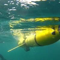 Les planeurs déployés dans le golfe du Saint-Laurent descendront à 300 mètres de profondeur.