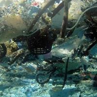 Des matières plastiques au fond d'un plan d'eau.