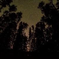 Le ciel étoilé dans le parc provincial Quetico.