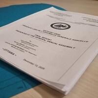 Rapport publié par le comité interne de la Communauté camerounaise du Canada de la région de la capitale nationale (COCACO).