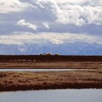 Une chaîne de montagnes en Alaska.