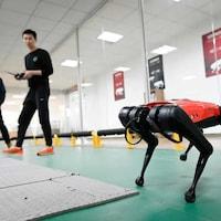 Deux hommes contrôlent un robot-chien à distance. Un des deux tient une boîte de contrôle dans ses mains.