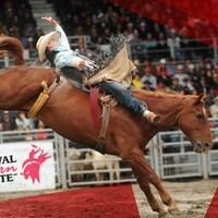 Un homme fait du rodéo sur un cheval dans une arène.