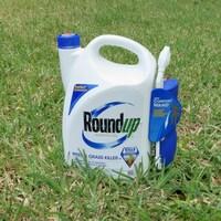 Une bouteille de Roundup placée sur une pelouse.