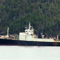 Un navire marchand accosté sur la côte.