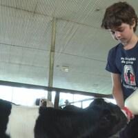Enfant amputé de l'avant-bras qui nourrit un veau.