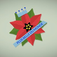 le poinsettia, plante de Noël