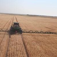 Pulvérisation d'herbicide sur un champs de blé dans les Prairies.