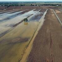 Image aérienne d'une terre agricole inondée.