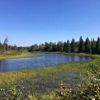 Un paysage montrant le coude d'une rivière et de la forêt sur fond de ciel bleu.