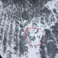 Vue aérienne d'une forêt enneigée avec un cercle rouge montrant l'endroit où a eu lieu l'accident.