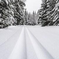 Une piste fraichement tracée dans un décor enneigé