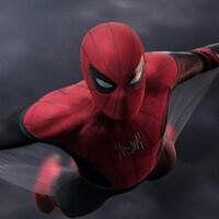 Spider-Man dans son costume