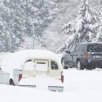 Des voitures prises dans la neige en bordure d'une route.