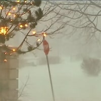 Paysage hivernal balayé par un blizzard.