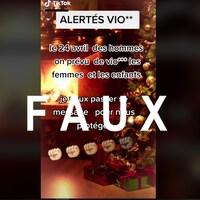Capture d'écran d'une publication sur le réseau social TikTok relayant une fausse rumeur sur l'imminence d'un «Jour national du viol».