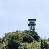 Une tour d'observation dépasse de la cime des arbres.