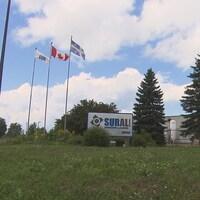 Affiche de Sural et trois drapeaux flottant au vent avec l'usine au loin.