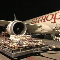 Un avion d'Ethiopian Airlines, vu de l'extérieur, la nuit. Devant l'avion : des cercueils empilés sur une palette, sous un filet.