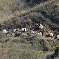 Ils inspectent le site de l'accident avec du matériel spécialisé.