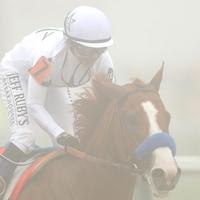 Le jockey Mike Smith sur son cheval Justify