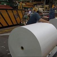 Des rouleaux industriel de papiers.