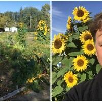 Un homme dans un jardin communautaire à Regina