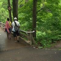Le parc de la Gatineau a été créé en 1938.