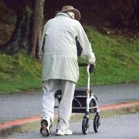 Deux aînés marchent sur une allée dans un parc.